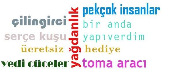 Dilbilimsel Uzatım (Pleonasm) ve Türkçedeki Yaygın Örnekleri