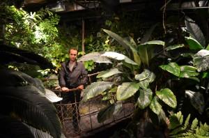 Aquaria ve tropik orman