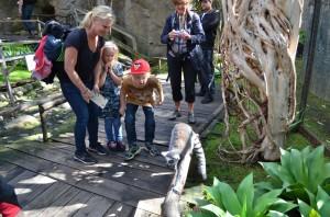 Skansen Akvaryumu ve lemurlar