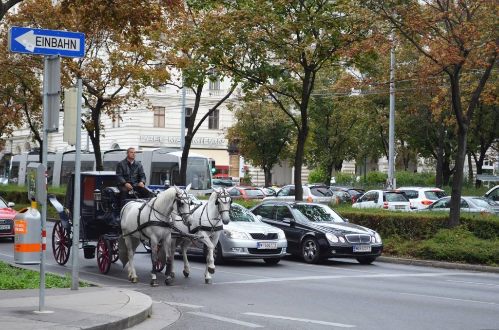 Faytonla Viyana turu