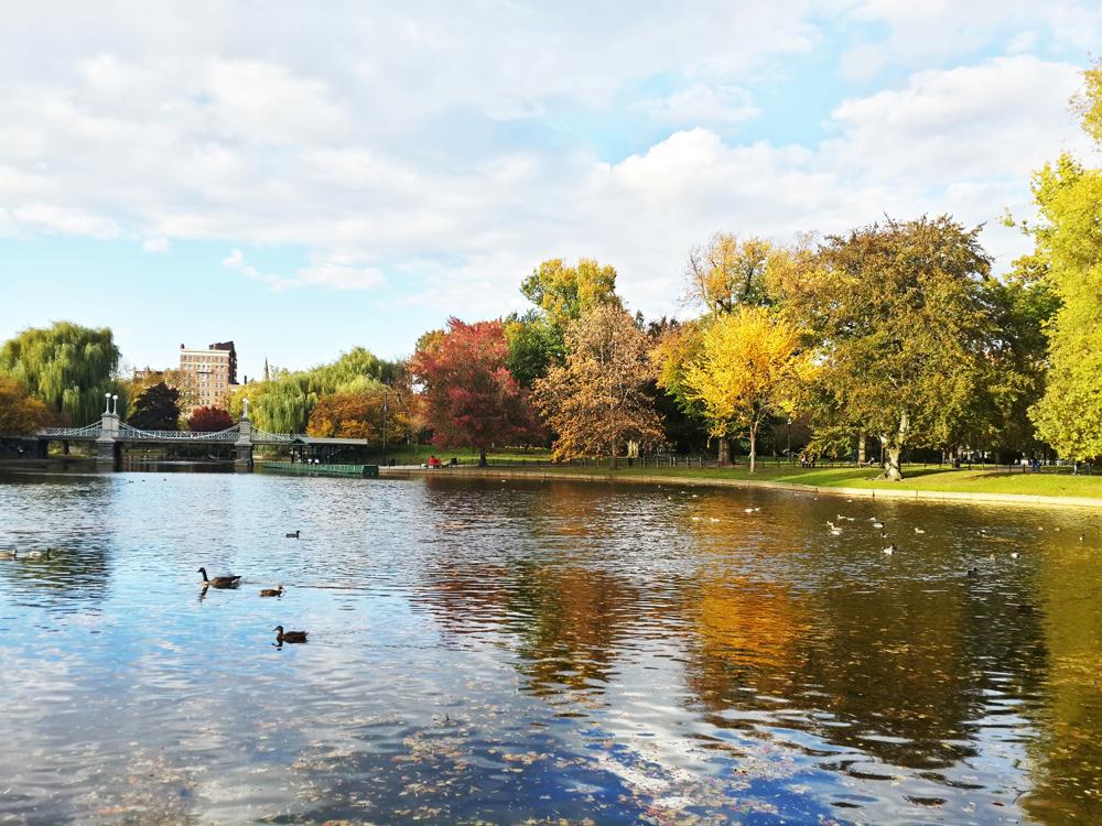 Boston Parkı