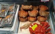 Tsukiji balik pazarı