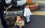 Ueno Zoo ve Japon çocukları