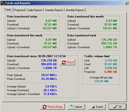 NetMeter raporlar ekranı
