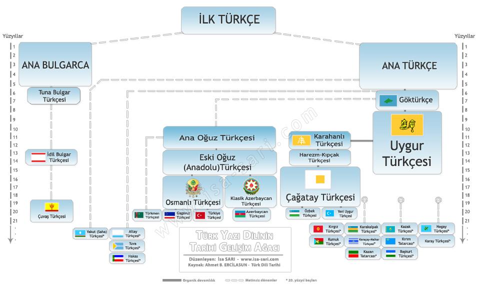 Türk Yazı Dilinin Tarihî Gelişim Ağacı